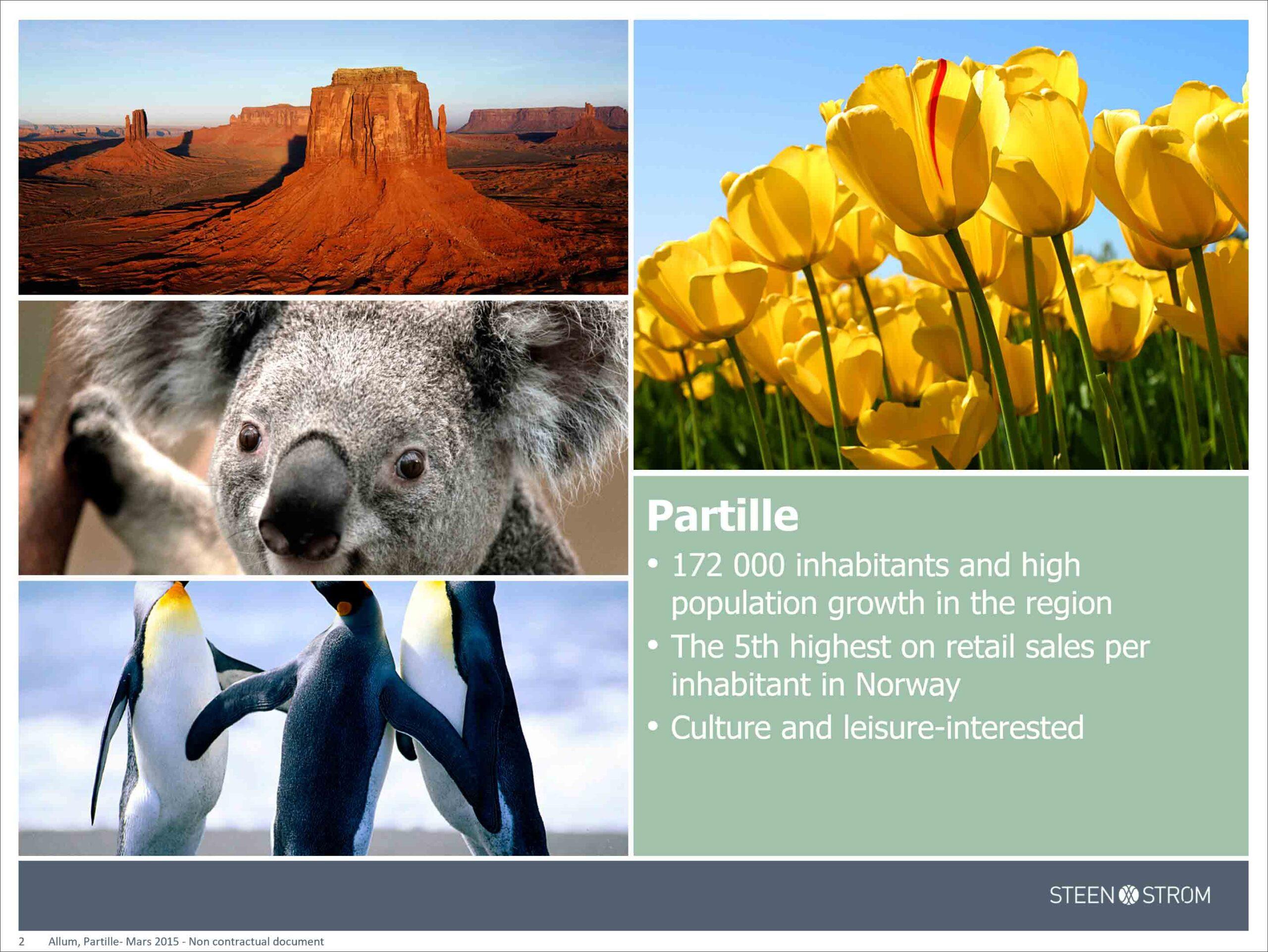 Allum PowerPoint presentation