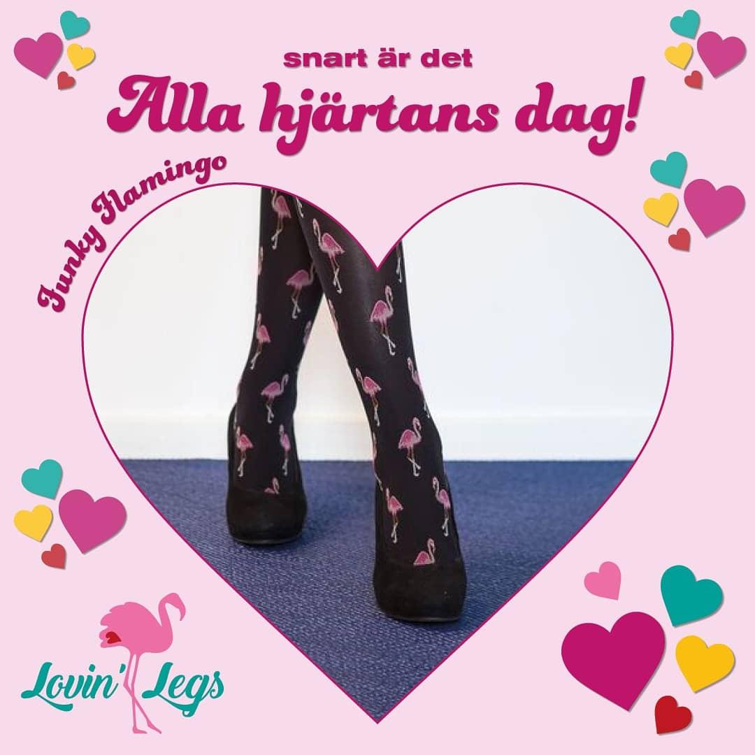Lovin' Legs instagram